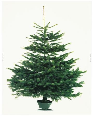 Ikea Margareta Christmas Tree Fabric