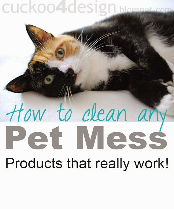 Pet cleaning tips and tricks