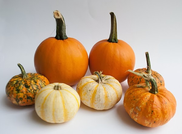 small pumpkins
