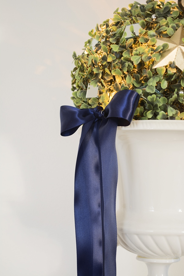 Boxwood with lights and blue bow