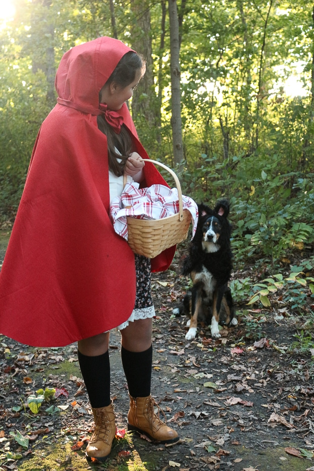 big bad wolf and little read riding hood
