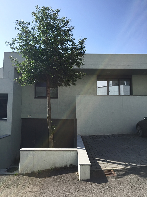 concrete house - Swiss architecture