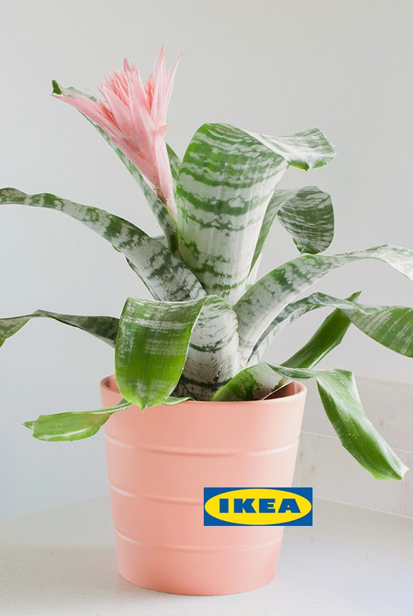 Ikea painted flower pot
